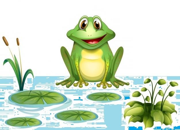 Żaba w wodzie dupę moczy